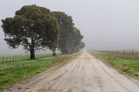 Country Road near Carrieton, South Australia